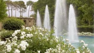 jardin perse 2