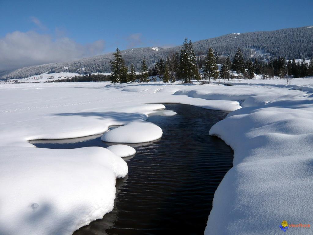 lac-des-rousses-jura-visoflora-23087